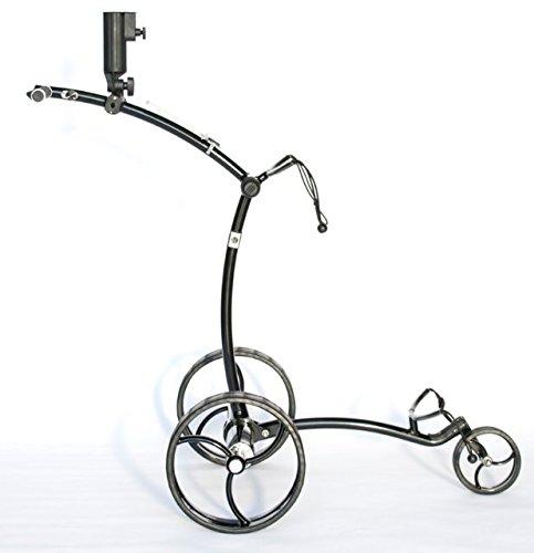 CartTek grx-975liブラックElectricリチウムイオンバッテリーゴルフカートバッグ B00UCEDBYQ