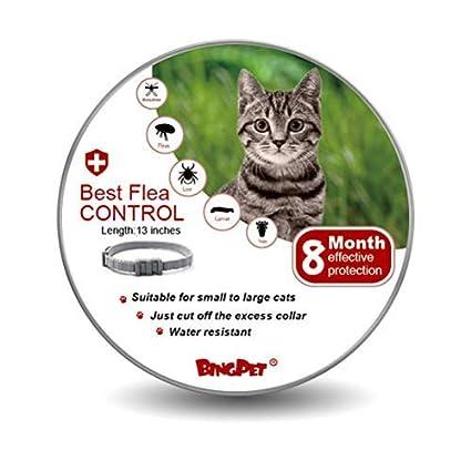 BINGPET Collar de pulgas y garrapatas para Gato, Cuello ...