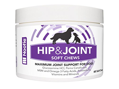 Nootie-Glucosamine-Chondroitin-Hip-and-Joint-Supplement-for-Dogs-120-Soft-Chews