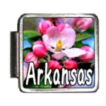Arkansas State Flower Apple blossom Photo Italian Charm Bracelet Link