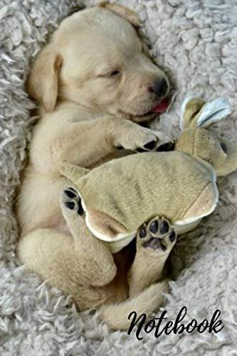 Notebook-Sleeping-golden-Labrador-retriever-puppy-120-pages-journal