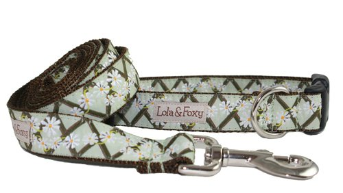 Lola & Foxy Sage Ranch 1-Inch Wide Dog Collar, Large, Green