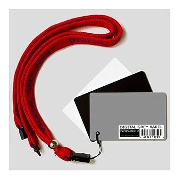 Amazon.com: Imagen digital Flow DGK Herramientas de color ...
