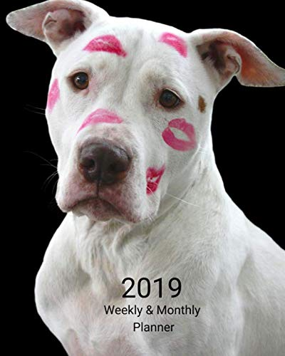 2019 Weekly and Monthly Planner: White Pitbull with Lipstick Daily Organizer -To Do -Calendar in Review/Monthly Calendar with U.S. HolidaysNotes Volume 2
