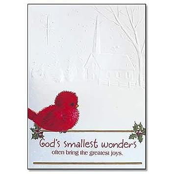 Amazon.com : Abbey Press Christmas Card (Boxed) Cardinal and ...