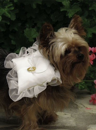 Beverly Clark Dog Ring Pillow White Small Canine Wedding Apparel Ceremony Furry Friends Collection