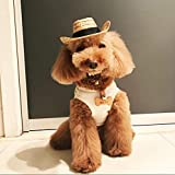 VT BigHome smart cool cowboy Woven straw dog hat pet cap for dogs accessories g