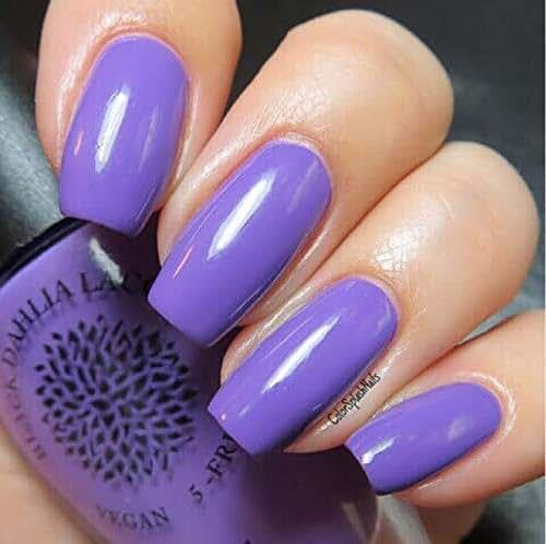 Amazon.com: Lavender Lilies