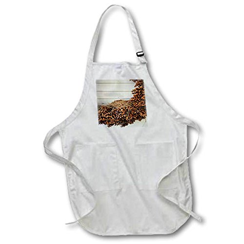 3dRose TDSwhite - Miscellaneous Photography - Birds Nest Pinecone Wreath - Full Length Apron with Pockets 22w x 30l (apr_285251_1) ()
