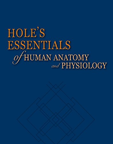 Student Study Guide to accompany Hole's Essentials of Human Anatomy and Physiology