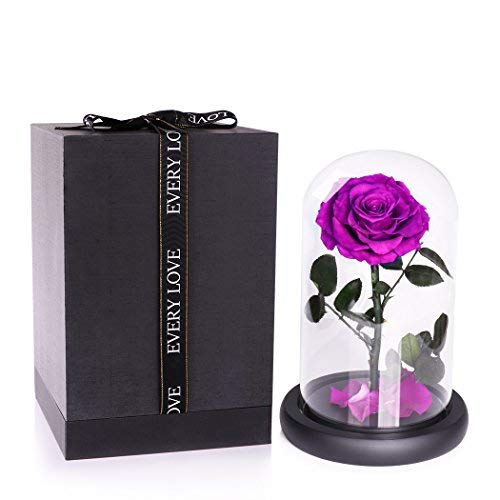 JTTVO Enchanted Rose in Glass Dome Bell, Beauty and The Beast Real Rose Preserved Forever Flower A Timeless for Her Valentines Day Wife Girlfriend ...