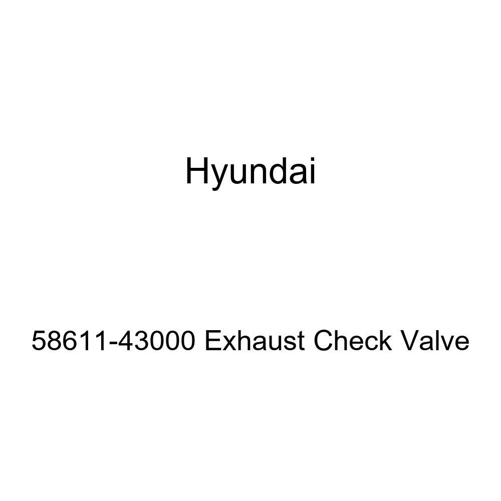 Genuine Hyundai 58611-43000 Exhaust Check Valve