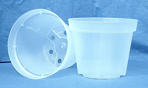 "Qty of 2 Clear Plastic Grid Pot for Orchids 4 1//4/"" Diameter Made in Germany"