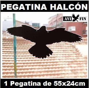 Silueta Pegatina HALCÓN AHUYENTADOR Aves: Evita Impactos contra el Cristal.