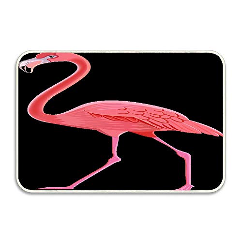 (Flamingo Clipart Animated Personalized Doormat Welcome Mat Door Mat Decorative Indoor Outdoor Doormat Non-Slip Machine Washable Rubber Backing Mat 24