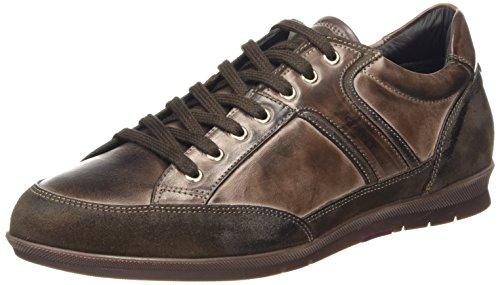 GANT Barrow - zapatilla deportiva de cuero hombre marrón - Braun (dark brown  G46)