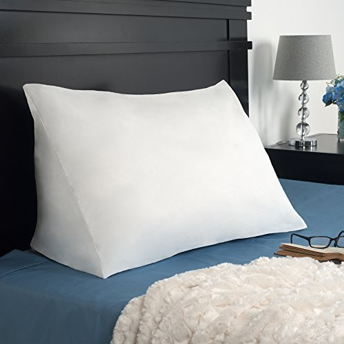 Remedy Down Alternate Reading Wedge Pillow by Remedy