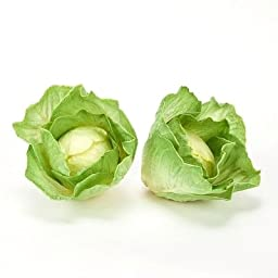 Cabbage or Lettuce Head, Artificial Vegetables Fake Food, Qty 3