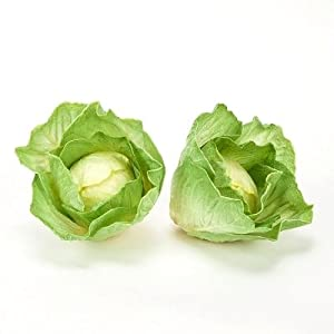 Artificial Vegetables Cabbage or Lettuce Head, Fake Food, Qty 3 105