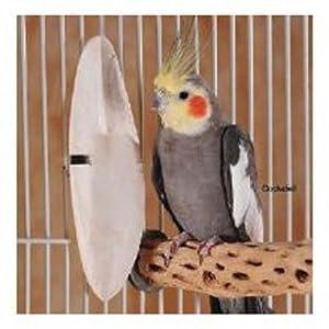 Prevue Pet Products BPV11465 5-Inch Bird Cuttlebone Box, Medium, 5-Pound 42