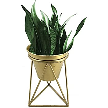 Amazon Com Plant Urns Planter Pot Indoor Geometric Metal Stand
