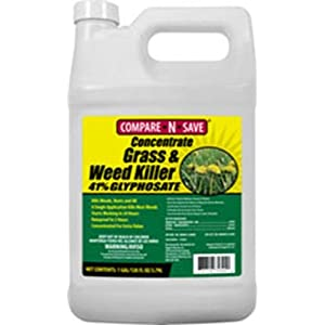 Compare-N-Save Concentrate Grass and Weed Killer, 41-Percent Glyphosate, 1-Gallon , white – 016869