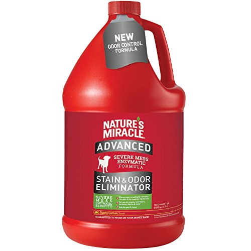 Nature's Miracle Advanced Stain and Odor Eliminator Dog, For Severe Dog Messes, Sunny Lemon Scent