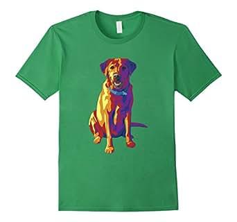 Men's Bright Rainbow Labrador Retriever 3XL Grass