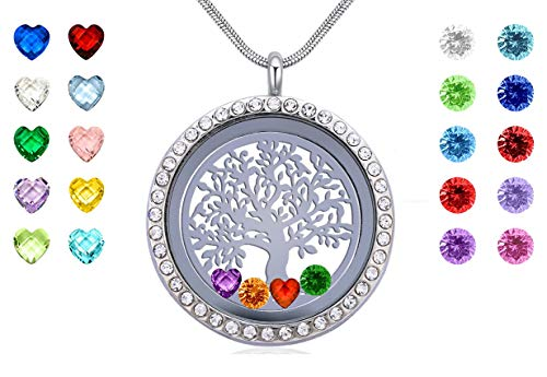 Family Tree of Life Stainless Steel Locket Pendant, Floating Charms Living Memory Locket Necklace with 24PCS Birthstones, Best Gifts for Women Girls Mom Grandma]()
