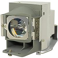GOLDENRIVER RLC-070 Original Projector Replacement Lamp for VIEWSONIC PJD5126 PJD6223 PJD6353 PJD6353s PJD6653w PJD6653ws