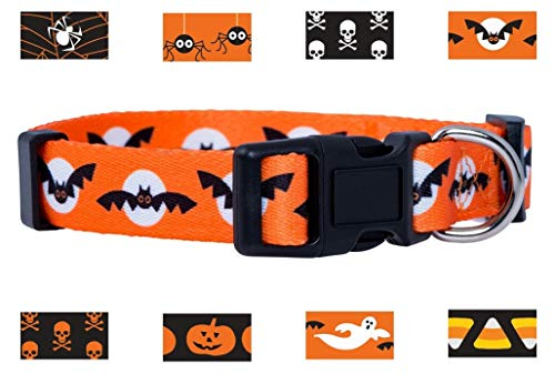 Native Pup Halloween Dog Collar (Small, Bats and Moon)