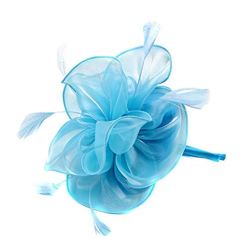 GLVSZ Fascinator Top Hats Flower Cocktail Hair Clip Mesh Net Feather Headwear for Women Girls Brides Tea Party Derby Blue