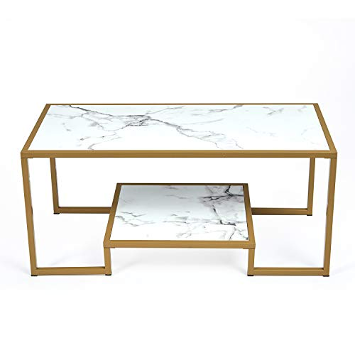 McNeil 40'' Marble Look 2-Tier Coffee Table Tea Snack Cocktail Sofa Side End Table TV Stand, Gold & White Carrara