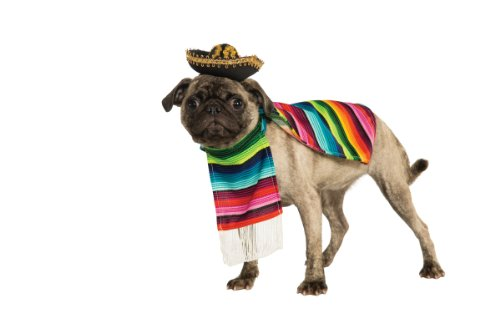 Black Pugs In Costumes (Rubie's Pet Costume, Medium, Mexican Serape)
