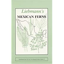 Liebmann's Mexican Ferns