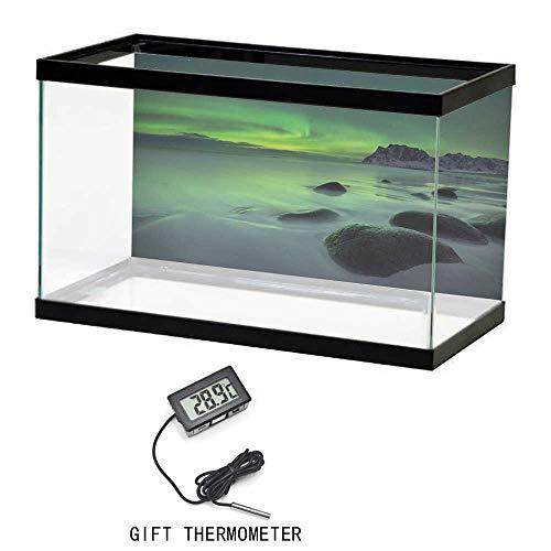 - Cusotom Fish Tank Wallpaper, Aurora Borealis, Magic Nature Panorama Coastline Oval Energy Sky Mist Picture, Almond and Lime Green, 24
