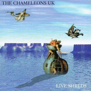 Live Shreds by Cleopatra