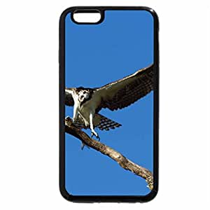 iPhone 6S / iPhone 6 Case (Black) Catch the snow