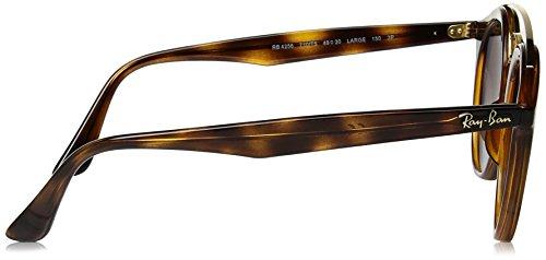 abe6381c69 Amazon.com  Ray-Ban Injected Unisex Sunglass Polarized Round