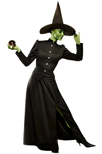 Classic Witch Costumes Plus Size (Classic Witch Costume - Plus Size 2X - Dress Size 20-22)