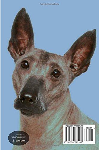 Xoloitzcuintli: Artified Pets Journal/Notebook/Diary 160 Pages 2