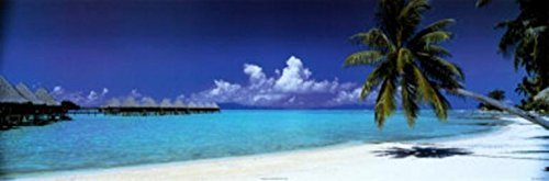 Buyartforless Palm Island Retreat Tropical Island White Sands 36x12 Photograph Print Poster Coastal Getaway