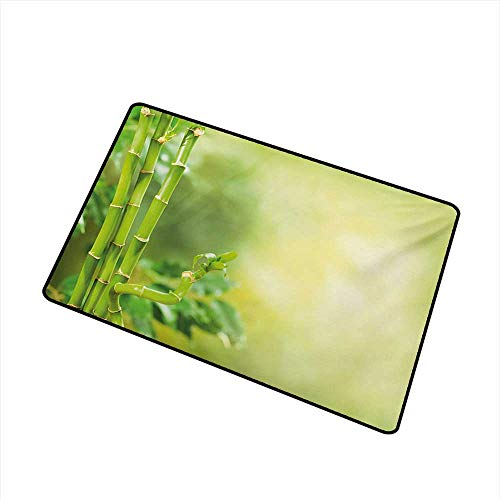 Non-Slip Door mat Spa Green Beautiful Lush Asian Bamboos with Other Tree Braches and Bushes Image W24 xL35 Antifouling