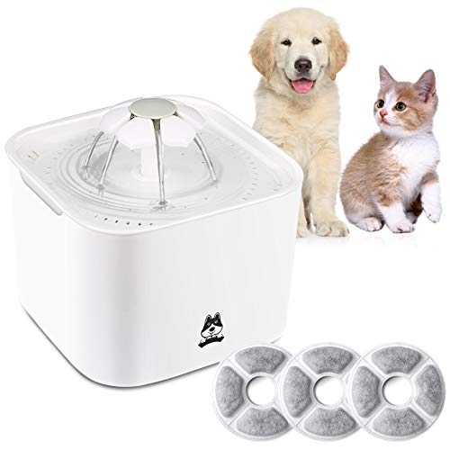 - TDYNASTY DESIGN Cat Dog Pet Water Fountain 2L Drinking Dispenser Fresh Water Bowl Healthy Quiet Waterer with 3pcs Replaceable Filters for Dogs,Cats,Birds and Small Animals
