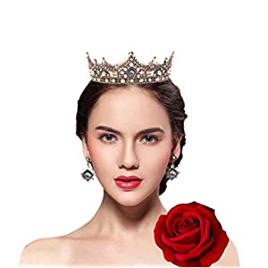 FiLL&Joy Party Red Rose Wedding Birthday Queen Princess Gift Crystal Handcrafted Tiara Crown (Vintage Coffee) 89