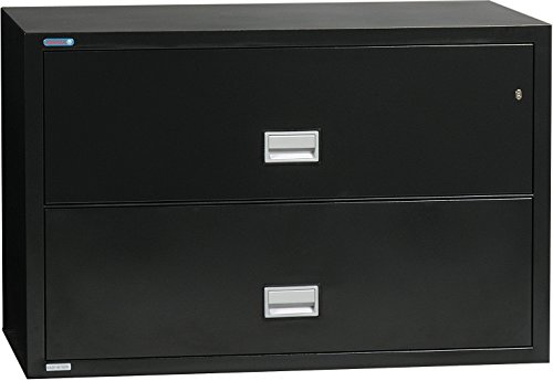 (Phoenix Lateral 44 inch 2-Drawer Fireproof File Cabinet - Black)