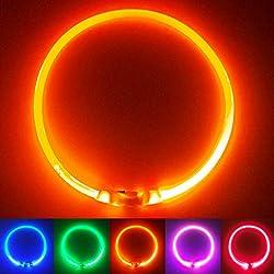 PetSol LED Leuchthalsband für Hunde USB Aufladbar LED Hundehalsband Stück hundehalsband Leuchtend Wiederaufladbares und…