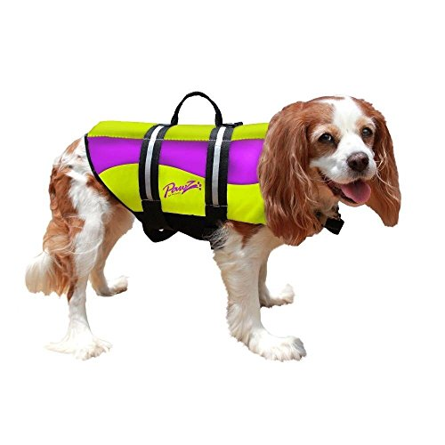 Pawz Pet Products Neoprene Doggy Life Jacket, Green/Purple, Large For Sale