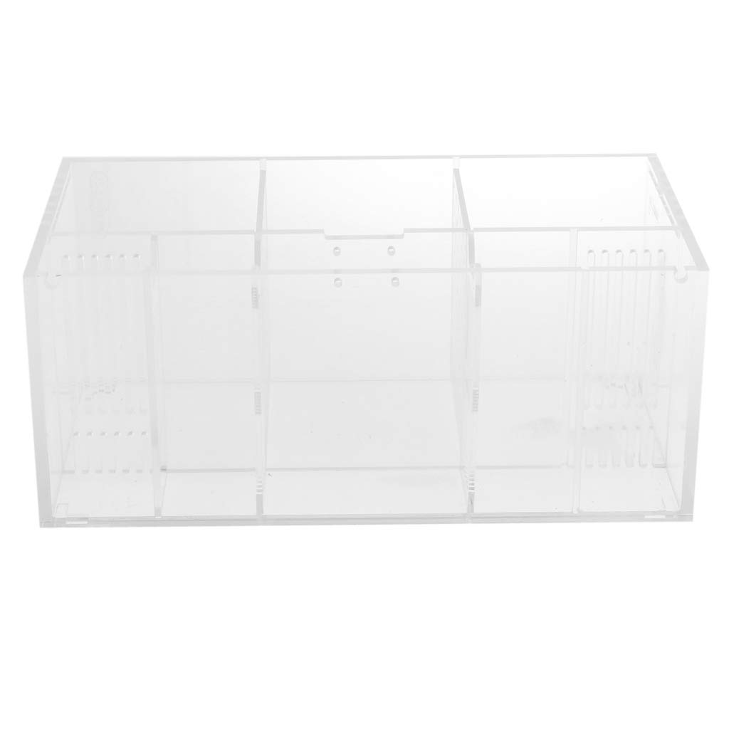 MagiDeal Acrylic Fish Tank Isolation Box Aquarium Breeding House Filter Box for Fish