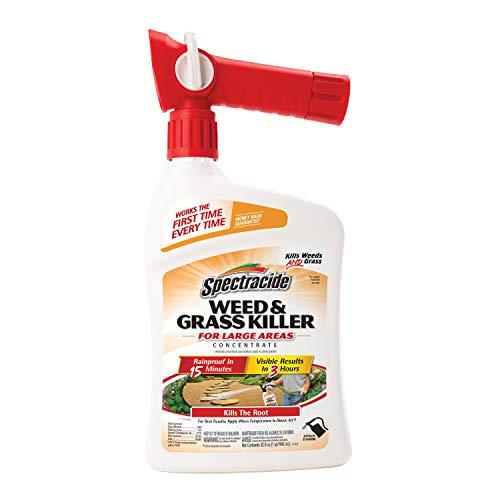 Spectracide Weed & Grass Killer Concentrate, Ready-to-Spray, 32-Ounce (Best Grass Killer For Flower Beds)